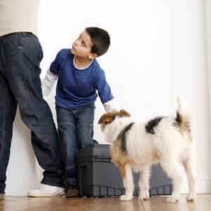 Young boy stroking dog
